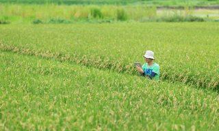 今話題のスマート農業って?ICTを活用した次世代の農業とは