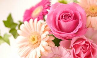 お花を飾って癒しの空間に!その効果と美しく見せる5つの飾り方