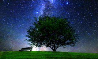 夏の夜空を満喫!知っておくと楽しい有名な夏の星座とは