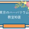 東京のハーバリウム教室10選。初心者でも楽しめるレッスンはココ!