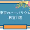 東京のハーバリウム教室11選。初心者でも楽しめるレッスンはココ!
