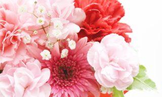 東京のおすすめ生け花教室7選。初心者でも楽しめるレッスンはココ!