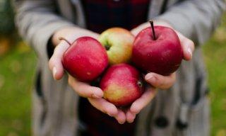 リンゴ酢ダイエットが成功しないのはなぜ?痩せるための4つの秘訣!